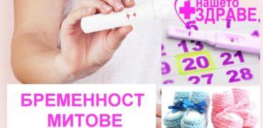 9 мита за забременяването