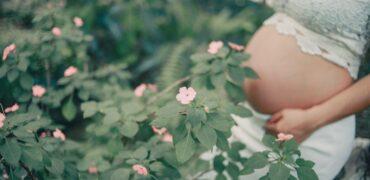 Максимално ефективни: Кои са топ билките за подпомагане на забременяването